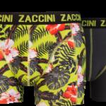 Nieuwe-zaccini-1-254x203